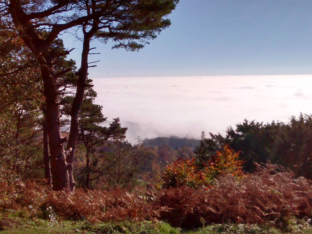 Above the clouds at Leith Hill