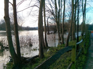 A flooded River Mole at Thorncroft