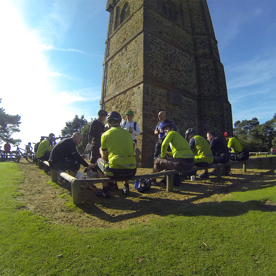Moles at a sunny Leith Hill Tower