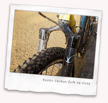Exotic Carbon Rigid MTB fork in detail