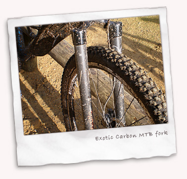 Exotic Carbon Rigid MTB fork