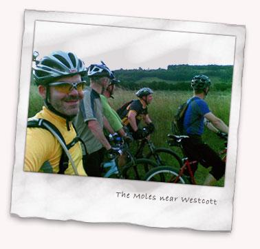 The Moles at Westcott